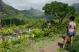 maurice - vallée du pouce