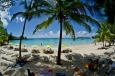 île maurice, peyrebere