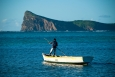 île maurice, bain boeuf